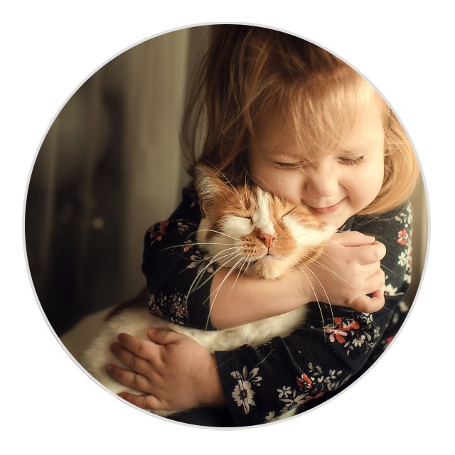 ideas for mothering sundays pictures - pet